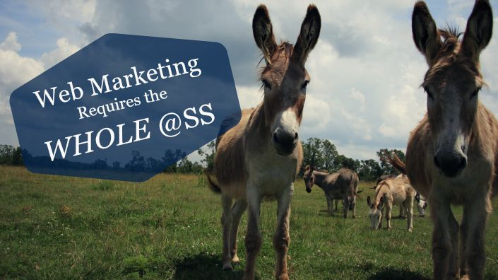 Web Marketing Requires the Whole Ass