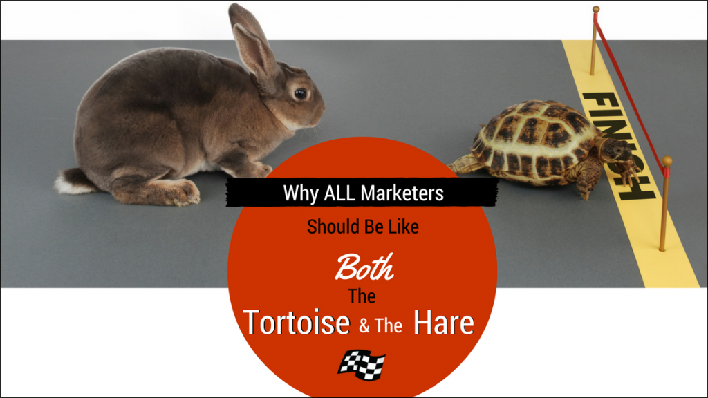 marketers should be like tortoise and hare